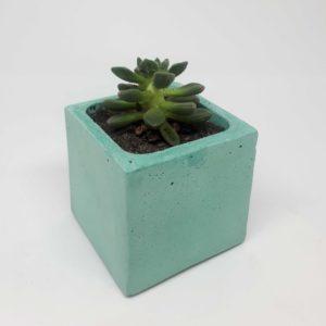alchimies-lyon-click-and-collect-cadeaux-noel-artisanat-createurs-boutique-lampe-decoration-beton-deco-junny-pot-succulentes